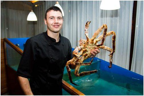 Аквариум для устриц Аквариумы для морепродуктов.. Аквариум для содержания морских беспозвоночных в харьковском ресторане