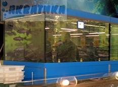 Аквариум. Торговый аквариум. Аквариум торговый. Торговые аквариумы для продажи живой рыбы. Аквариумы торговые для живой рыбы. Продажа живой рыбы в ресторанах из аквариумов.