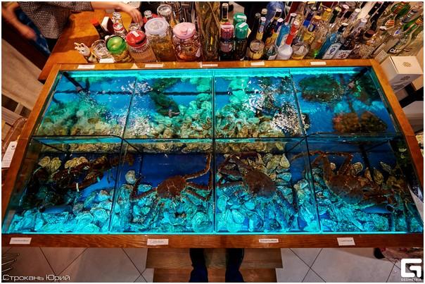 Аквариум для устриц Аквариумы для морепродуктов.. Торговый аквариум из стеклопакета в ресторане.Живые морепродукты из аквариума. Аквариумы для устриц, омаров, лангустов, крабов, моллюсков, раков. Изготовление аквариумов для содержания моллюсков на заказ. Аквариумы для торговли морепродуктами. Аквариум для продажи морепродуктов.ц, омаров, лангустов, крабов, моллюсков, раков. Изготовление аквариумов для содержания моллюсков на заказ. Аквариумы для торговли морепродуктами. Аквариум для продажи морепродуктов.