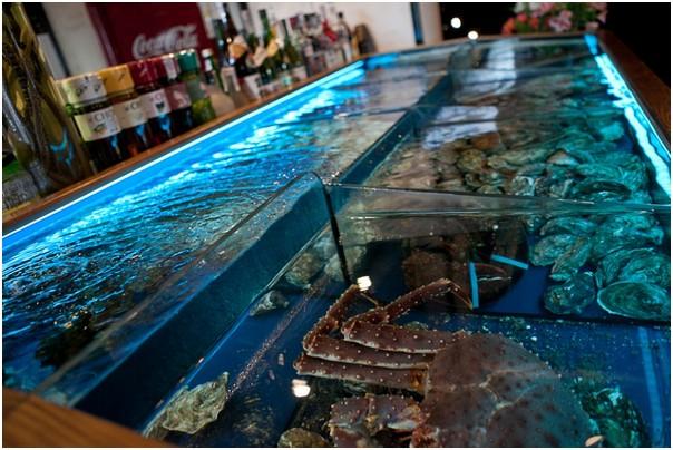 Аквариум для устриц Аквариумы для морепродуктов.. Торговый аквариум из стеклопакета в ресторане.Живые морепродукты из аквариума. Аквариумы для устриц, омаров, лангустов, крабов, моллюсков, раков. Изготовление аквариумов для содержания моллюсков на заказ. Аквариумы для торговли морепродуктами. Аквариум для продажи морепродуктов.