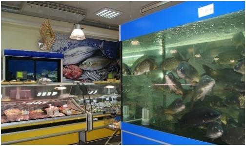 Торговый аквариум. Аквариум торговый. Торговые аквариумы для продажи живой рыбы. Аквариумы торговые для живой рыбы. Продажа живой рыбы в ресторанах из аквариумов.