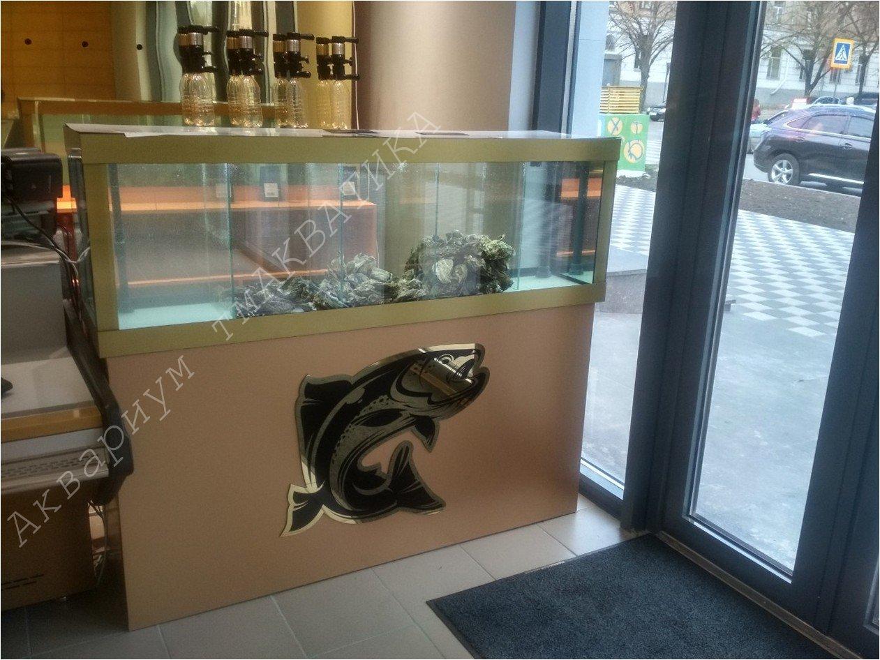 Аквариум для продажи устриц. Акваріум для продажу устриць, лобстерів та іншіх морепродуктів