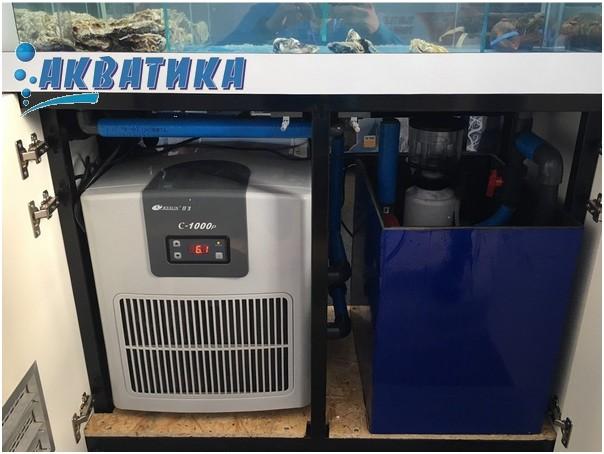 Оборудование для морского аквариума: холодильник, скиммер, САМП, УФ-стерилизатор.