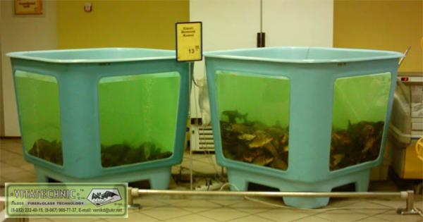 Торговый аквариум без освещения. Аквариумы для продажи морских животных и раков. Аквариум для передержки морских животных в ресторане. Торговый аквариум. Аквариум торговый. Торговые аквариумы для продажи живой рыбы. Аквариумы торговые для живой рыбы. Продажа живой рыбы в ресторанах из аквариумов. Торговый аквариум для морепродуктов. Аквариумы торговые для продажи морепродуктов.