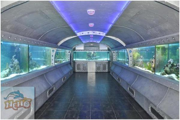 Морские аквариумы в харьковском дельфинарии. Морские аквариумы в Харькове. Морской аквариум на заказ.