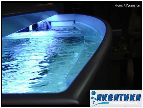 Ребра жесткости и поперечные стяжки в аквариуме с передним гнутым стеклом. Изготовление аквариумов на заказ. Изготовить аквариум. Аквариумы индивидуальные.