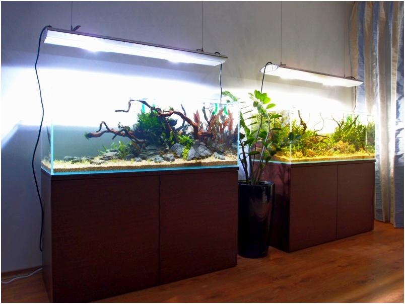 Аквариум из стекла флоат. Аквариумы из стекла оптивайт, из ультрапрозрачного стекла. Аквариум открытый купить в Харькове. Заказать аквариум.