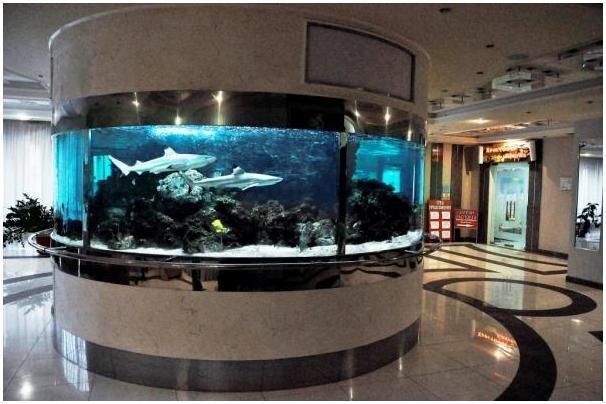 Купить аквариум в Харькове. Заказать аквариум в Харькове. Аквариум-цилиндр в офисном центре в Харькове. Аквариумы на заказ. Аквариумы с гнутыми стеклами. Аквариум купить. Цены на аквариумы. Изготовить аквариум