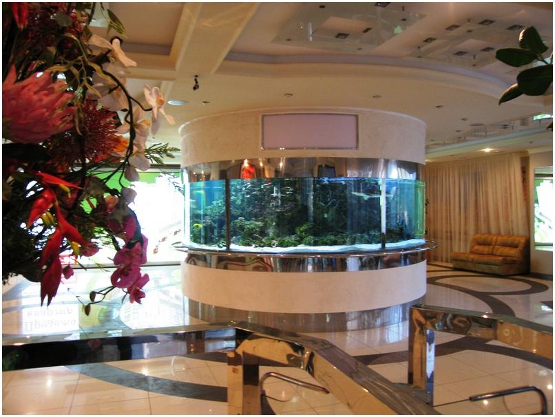 Купить аквариум в Харькове. Заказать аквариум в Харькове. Аквариум морской. Аквариум-цилиндр из гнутого стекла 19мм. Объем 12тонн. Аквариумы на заказ. Аквариумы с гнутыми стеклами. Аквариум купить. Цены на аквариумы. Изготовить аквариум
