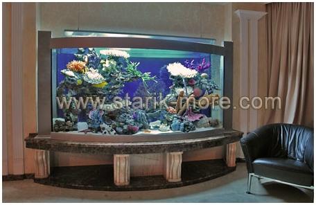 Купить аквариум в Харькове. Заказать аквариум в Харькове. Аквариум с передним гнутым стеклом. Аквариумы на заказ. Аквариумы с гнутыми стеклами. Аквариум купить. Цены на аквариумы. Изготовить аквариум