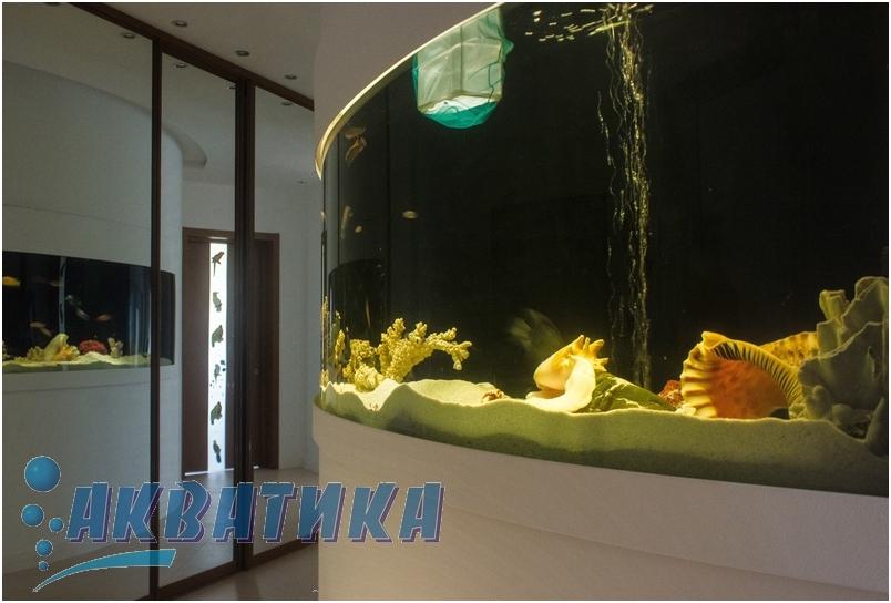 Угловой аквариум с гнутым стеклом.Аквариум с гнутым стеклом в виде волны. Морской аквариум с гнутым стеклом. Изготовление аквариумов с гнутыми стеклами  под заказ. Изготовление индивидуальных аквариумов под заказ. Аквариумная крышка. Крышки для аквариумов. Аквариумный светильник. Светильники аквариумные. Подставки для аквариумов. Тумбы аквариумные. Купить аквариум в Украине. Купить аквариум в Харькове. Заказать аквариум. Купить аквариумы. Заказать аквариумы. Заказ аквариумов в Харькове. Покупка аквариума. Продажа аквариума.