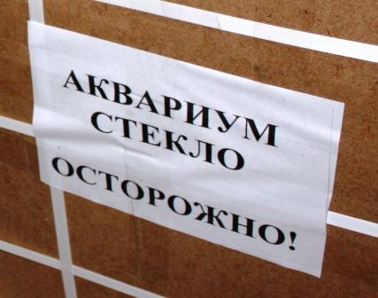 Доставка аквариумов по Украине. Покупка аквариумов. Доставка аквариума. Купить и доставить аквариум. Стоимость доставки аквариумов. Цена доставки аквариума.