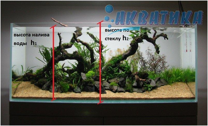Заказать аквариум в Акватике, Харькове, Украине. Купить аквариум в Киеве, Харькове, Херсоне, Николаеве, Полтаве, Сумах.