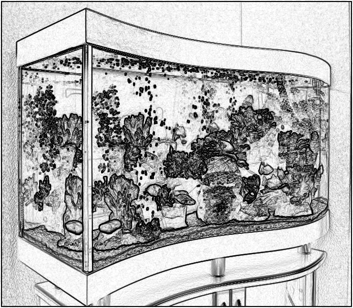 Аквариум Волна. Аквариум с передним гнутым стеклом. Купить аквариум в Харькове. Заказать аквариум в Харькове. Аквариумы купить в Харькове.