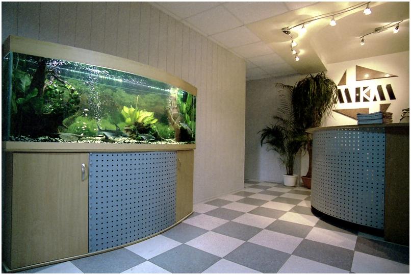 Аквариумная подставка. Аквариумная тумба. Подставка для аквариума. Тумба для аквариума из ДСП. Изготовление подставки для аквариума из ДСП. Изготовление тумбы для аквариума из ДСП. Заказать подставку для аквариума из ДСП. Заказать тумбу аквариумную из ДСП. Подставка под аквариум. Тумба под аквариум. Подставка аквариумная. Тумба аквариумная. Подставки под аквариумы. Тумбы под аквариумы. Подставки аквариумные. Тумбы аквариумные. Аквариумные тумбы. Аквариумные подставки. Подставка из металла для аквариума. Металлоконструкция для аквариума. Металлокаркас для аквариума заказать. Подставка из металла для аквариума. Заказать тумбу металлическую аквариумную.