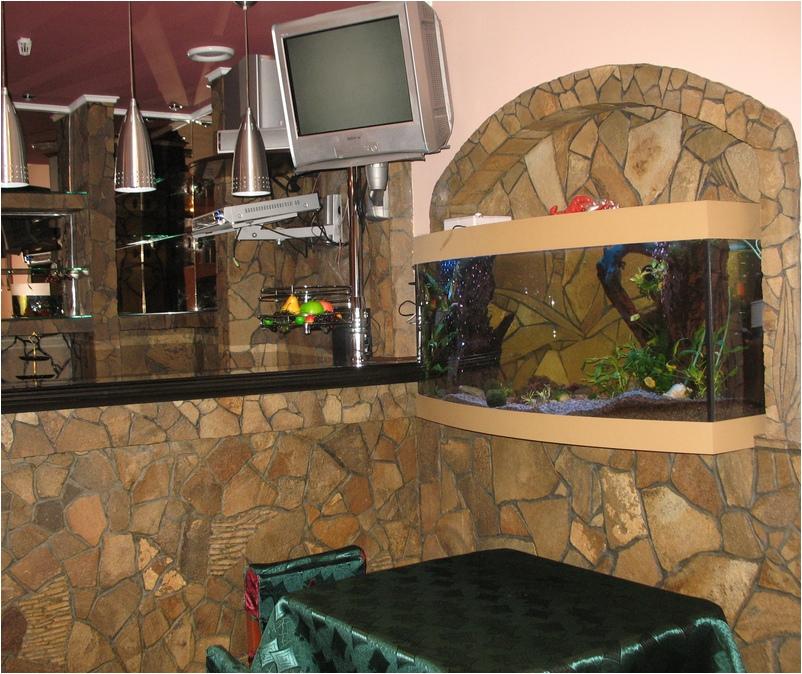 Аквариум с передним гнутым стеклом. Аквариумы на заказ. Аквариумы с гнутыми стеклами. Аквариум купить. Цены на аквариумы. Изготовить аквариум