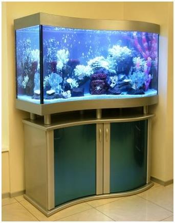 Аквариумная подставка. Аквариумная тумба. Подставка для аквариума. Тумба для аквариума из ДСП. Изготовление подставки для аквариума из ДСП. Изготовление тумбы для аквариума из ДСП. Заказать подставку для аквариума из ДСП. Заказать тумбу аквариумную из ДСП. Подставка под аквариум. Тумба под аквариум. Подставка аквариумная. Тумба аквариумная. Подставки под аквариумы. Тумбы под аквариумы. Подставки аквариумные. Тумбы аквариумные. Аквариумные тумбы. Аквариумные подставки. Оригинальная подставка из крашеного МДФ. Аквариумная подставка из МДФ. Аквариумная тумба. Тумбы аквариумные из МДФ. Подставки для аквариума из МДФ. Тумба для аквариума из МДФ. Заказать подставку, тумбу из МДФ