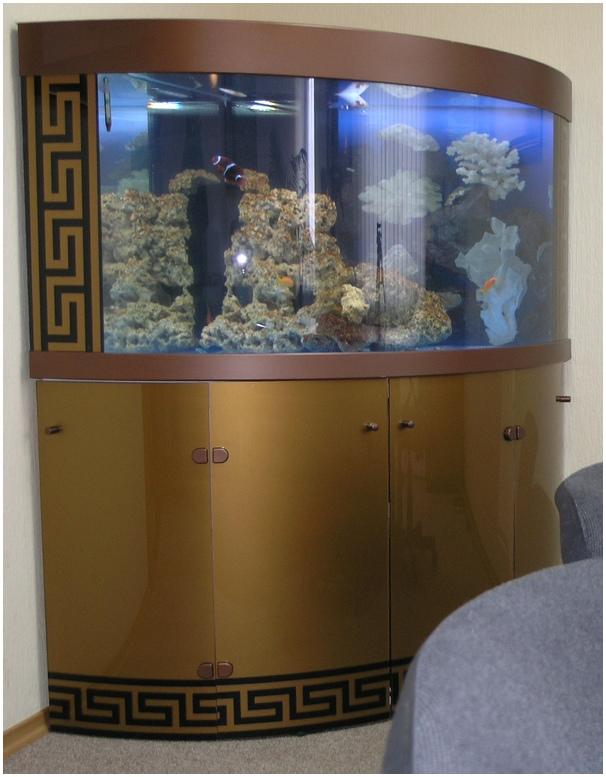 Гнутое стекло в качестве дверей подставки. Аквариумная подставка из ДСП. Аквариумная тумба из ДСП. Подставка для аквариума из ДСП. Тумба для аквариума из ДСП. Изготовление подставки для аквариума из ДСП. Изготовление тумбы для аквариума из ДСП. Заказать подставку для аквариума из ДСП. Заказать тумбу аквариумную из ДСП