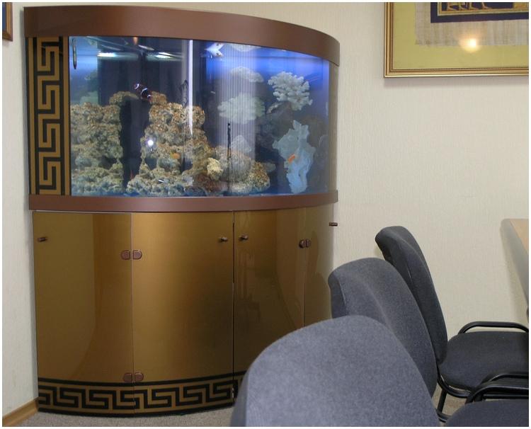 Аквариумная подставка. Аквариумная тумба. Подставка для аквариума. Тумба для аквариума из ДСП. Изготовление подставки для аквариума из ДСП. Изготовление тумбы для аквариума из ДСП. Заказать подставку для аквариума из ДСП. Заказать тумбу аквариумную из ДСП. Подставка под аквариум. Тумба под аквариум. Подставка аквариумная. Тумба аквариумная. Подставки под аквариумы. Тумбы под аквариумы. Подставки аквариумные. Тумбы аквариумные. Аквариумные тумбы. Аквариумные подставки. Подставка из металла для аквариума. Металлоконструкция для аквариума. Металлокаркас для аквариума заказать. Подставка из металла для аквариума. Заказать тумбу металлическую аквариумную