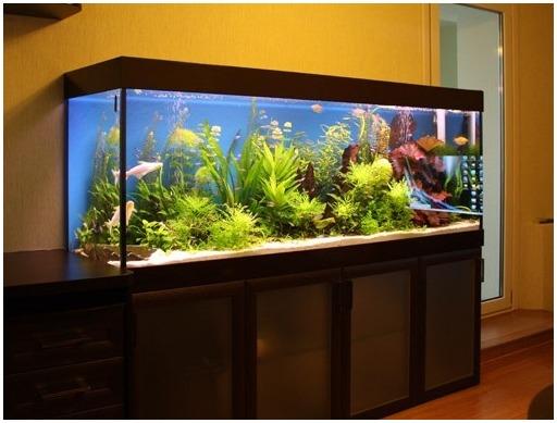 Аквариумная подставка из ДСП. Аквариумная тумба из ДСП. Подставка для аквариума из ДСП. Тумба для аквариума из ДСП. Изготовление подставки для аквариума из ДСП. Изготовление тумбы для аквариума из ДСП. Заказать подставку для аквариума из ДСП. Заказать тумбу аквариумную из ДСП