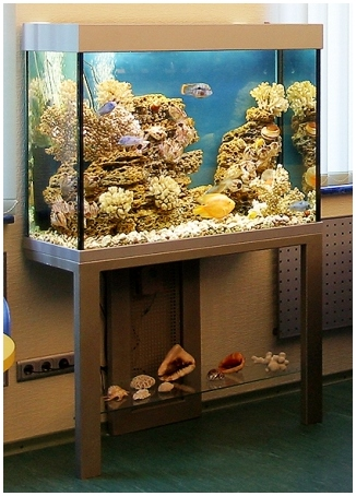 Аквариумная подставка. Аквариумная тумба. Подставка для аквариума. Тумба для аквариума из ДСП. Изготовление подставки для аквариума из ДСП. Изготовление тумбы для аквариума из ДСП. Заказать подставку для аквариума из ДСП. Заказать тумбу аквариумную из ДСП. Подставка под аквариум. Тумба под аквариум. Подставка аквариумная. Тумба аквариумная. Подставки под аквариумы. Тумбы под аквариумы. Подставки аквариумные. Тумбы аквариумные. Аквариумные тумбы. Аквариумные подставки. Подставка из металлического профиля. Основа подставки - металлоконструкция из профиля 60х30 и 40х40. Подставка из металла для аквариума. Металлоконструкция для аквариума. Металлокаркас для аквариума заказать. Подставка из металла для аквариума. Заказать тумбу металлическую аквариумную.