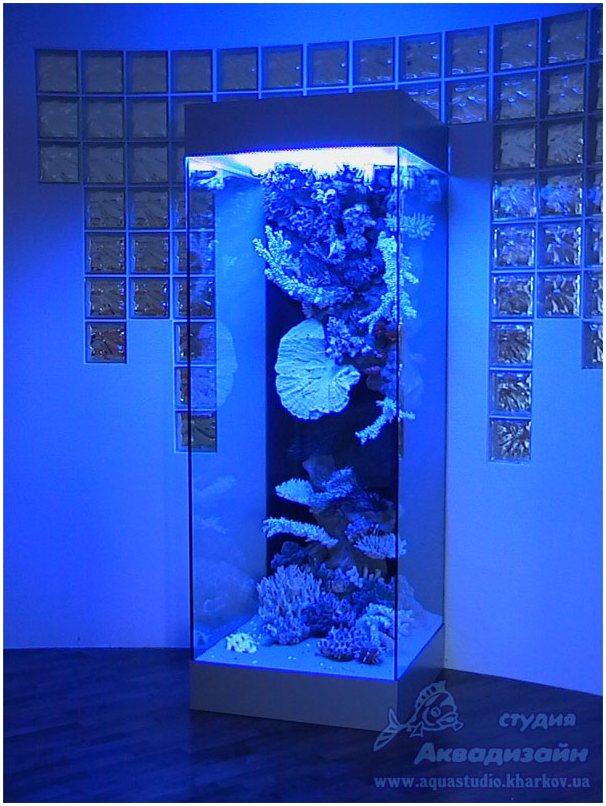 Стеклянные полы. Сухой аквариум. Купить сухой аквариум. Купить сухие аквариумы. Заказать сухой аквариум.
