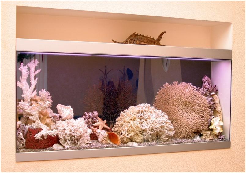 Стеклянные полы. Сухой аквариум. Купить сухой аквариум. Заказать изготовление сухого аквариума в Харькове, Киеве, Одессе, Луганске, Днепропетровске, Донецке, Херсоне, Полтаве.