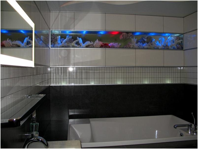 Стеклянные полы. Сухой аквариум. Купить сухой аквариум. Заказать изготовление сухого аквариума в Харькове, Киеве, Одессе, Луганске, Днепропетровске, Донецке, Херсоне, Полтаве. Стеклянный пол