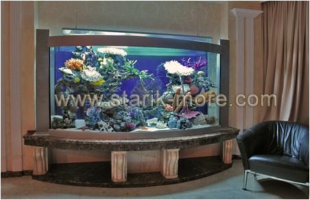 Стеклянные полы. Аквариум с декором. Аквариум с передним гнутым стеклом. Купить аквариум. Купить аквариумы. Заказать аквариум. Заказать аквариумы.