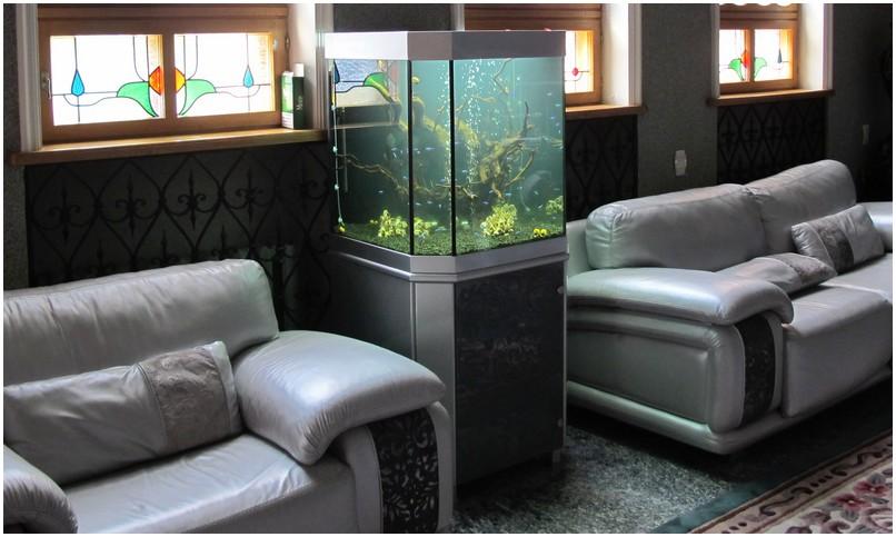 Аквариумная подставка из ДСП. Аквариумная тумба из ДСП. Подставка для аквариума из ДСП. Тумба для аквариума из ДСП. Изготовление подставки для аквариума из ДСП. Изготовление тумбы для аквариума из ДСП. Заказать подставку для аквариума из ДСП. Заказать тумбу аквариумную из ДСП. Подставка под аквариум. Тумба под аквариум. Подставка аквариумная. Тумба аквариумная. Подставки, тумбы под аквариумы. Подставки, тумбы аквариумные. Подставки для аквариумов. Аквариум в интерьере. Аквариумная подставка из МДФ. Аквариумная тумба. Тумбы аквариумные из МДФ. Подставки для аквариума из МДФ. Тумба для аквариума из МДФ. Заказать подставку, тумбу из МДФ
