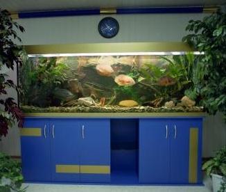 Аквариумная подставка из ДСП. Аквариумная тумба из ДСП. Подставка для аквариума из ДСП. Тумба для аквариума из ДСП. Изготовление подставки для аквариума из ДСП. Изготовление тумбы для аквариума из ДСП. Заказать подставку для аквариума из ДСП. Заказать тумбу аквариумную из ДСП. Подставка под аквариум. Тумба под аквариум. Подставка аквариумная. Тумба аквариумная. Подставки, тумбы под аквариумы. Подставки, тумбы аквариумные