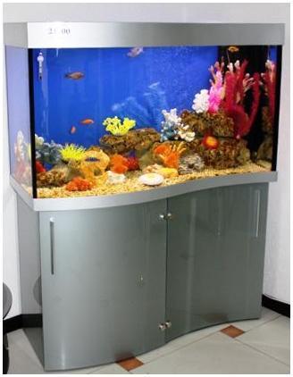 Гнутое стекло в качестве дверей подставки.Аквариумная подставка из ДСП. Аквариумная тумба из ДСП. Подставка для аквариума из ДСП. Тумба для аквариума из ДСП. Изготовление подставки для аквариума из ДСП. Изготовление тумбы для аквариума из ДСП. Заказать подставку для аквариума из ДСП. Заказать тумбу аквариумную из ДСП