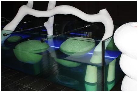 Аквариумы на заказ. Аквариумы с гнутыми стеклами. Аквариум купить. Цены на аквариумы. Изготовить аквариум