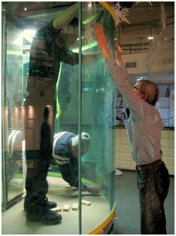 Купить аквариум в Харькове. Заказать аквариум в Харькове. Будет аквариум-цилиндр. Аквариумы на заказ. Аквариумы с гнутыми стеклами. Аквариум купить. Цены на аквариумы. Изготовить аквариум