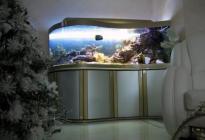 Морской аквариум в гостиной частного дома