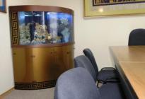 Удобно расположившийся в  зале заседаний аквариум