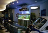 Своей необычной формой аквариум закрыл несущую колонну. Оформление: Головко В.