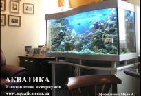 Переднее стекло аквариума имеет форму волны