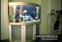 Цветовое решение облицовки аквариума и подставки