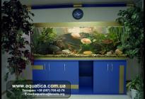 Простое решение: вписать аквариум в уже оформленное помещение