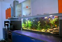 Необычное решение: рабочая стена кухни - аквариум.