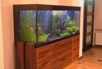 В гостиной классический аквариум занимает почетное место