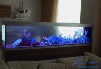 Разграничение пространства с помощью аквариума - популярный дизайнерский прием.