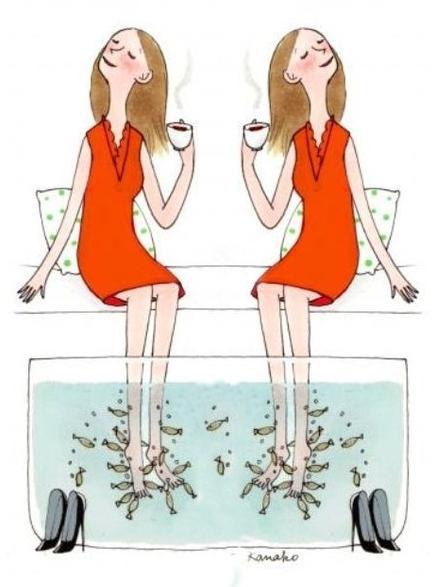 Garra rufa. Fish-spa процедура. Пилинг ног. Гарра Руфа. Gara Rufa. 2 посадочных места. Fish-spa пилинг тела. Fish-spa пилинг рук рыбками Гарра Руфа. Аквариумы для Гарра Руфа. Гарра Руфа рыба-доктор, доктор-фиш. Doctor-fish Garra Rufa.