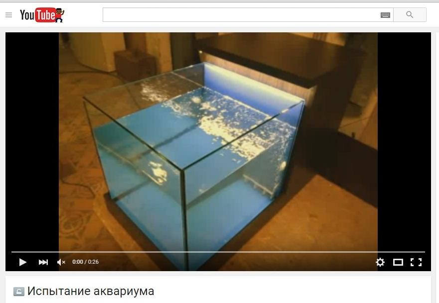 Видео испытания аквариума для фиш спа процедур.