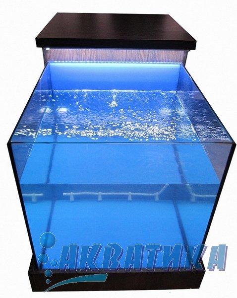 Garra rufa. Аквариум для фиш процедур. Купить аквариум гара руффа. Аквариумы для фиш спа салонов. Рыбки Гарра Руфа